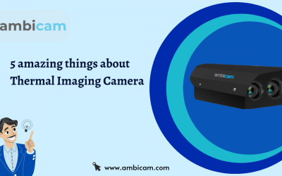 5 amazing things about Thermal Imaging Camera